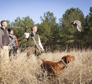 Falconers Retreat Hunting Package at Broadfield