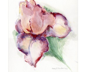 Vineyard Flower Print By Margrit Mondavi