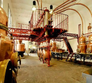 French Bitters Distillery Experience